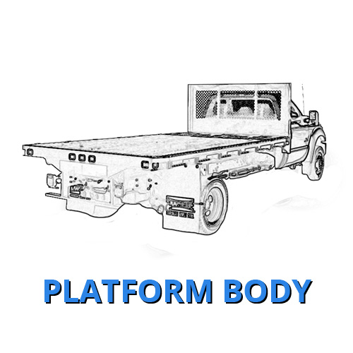 Platform Body Ford Work Truck